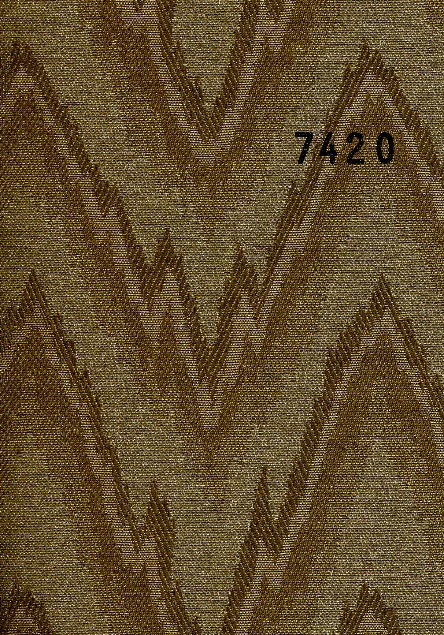 Mountain 7420