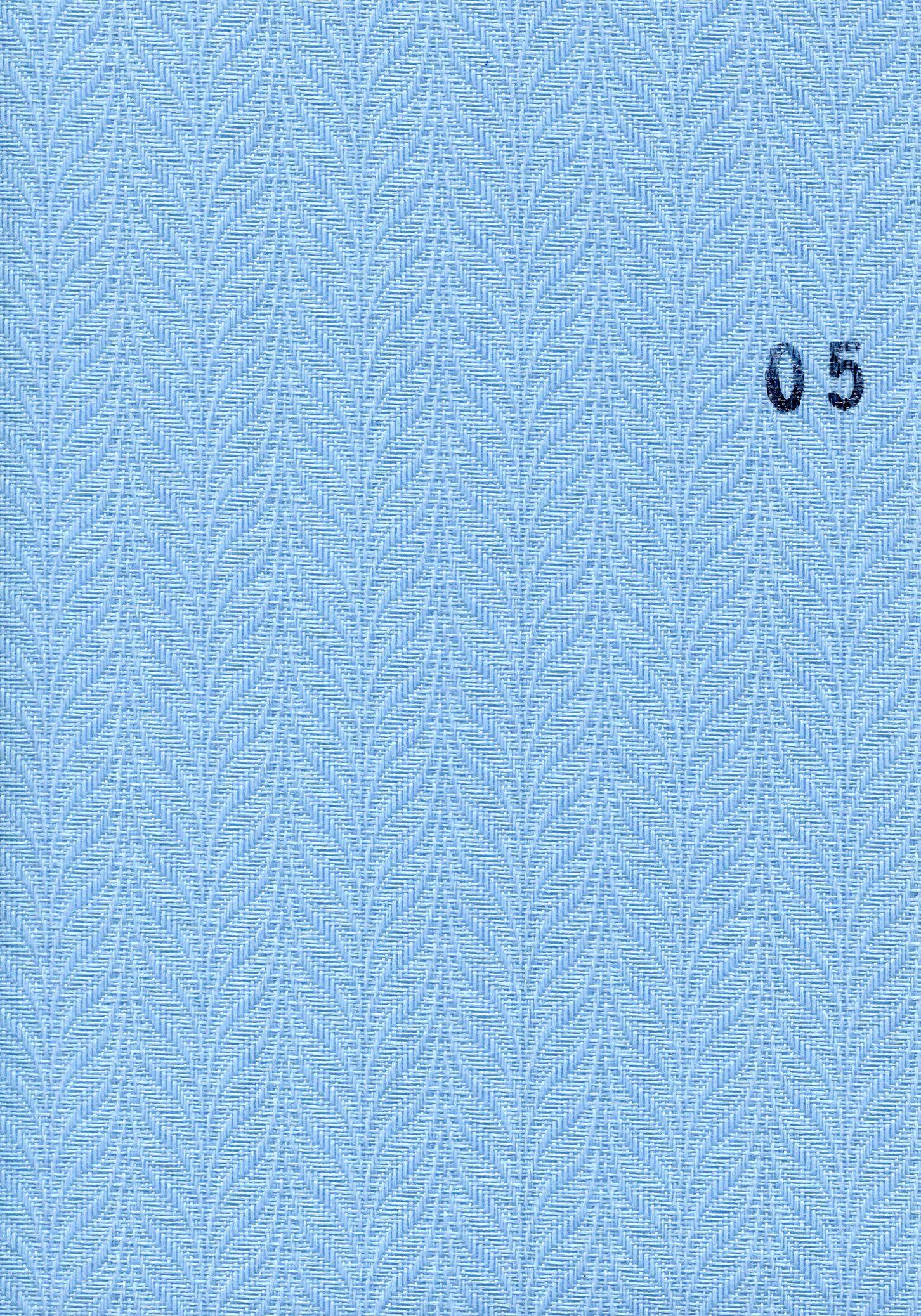 Reis 05