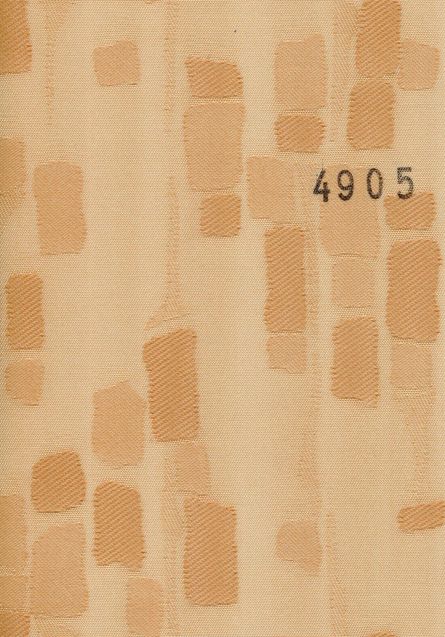 Rembrant 4905