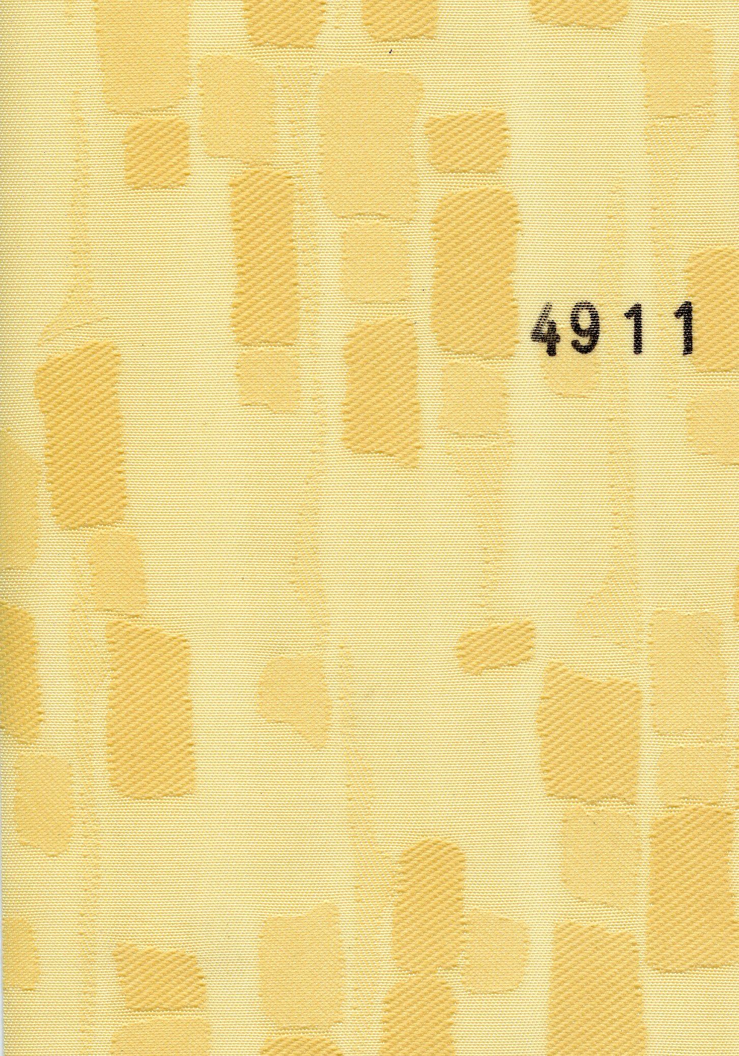 Rembrant 4911