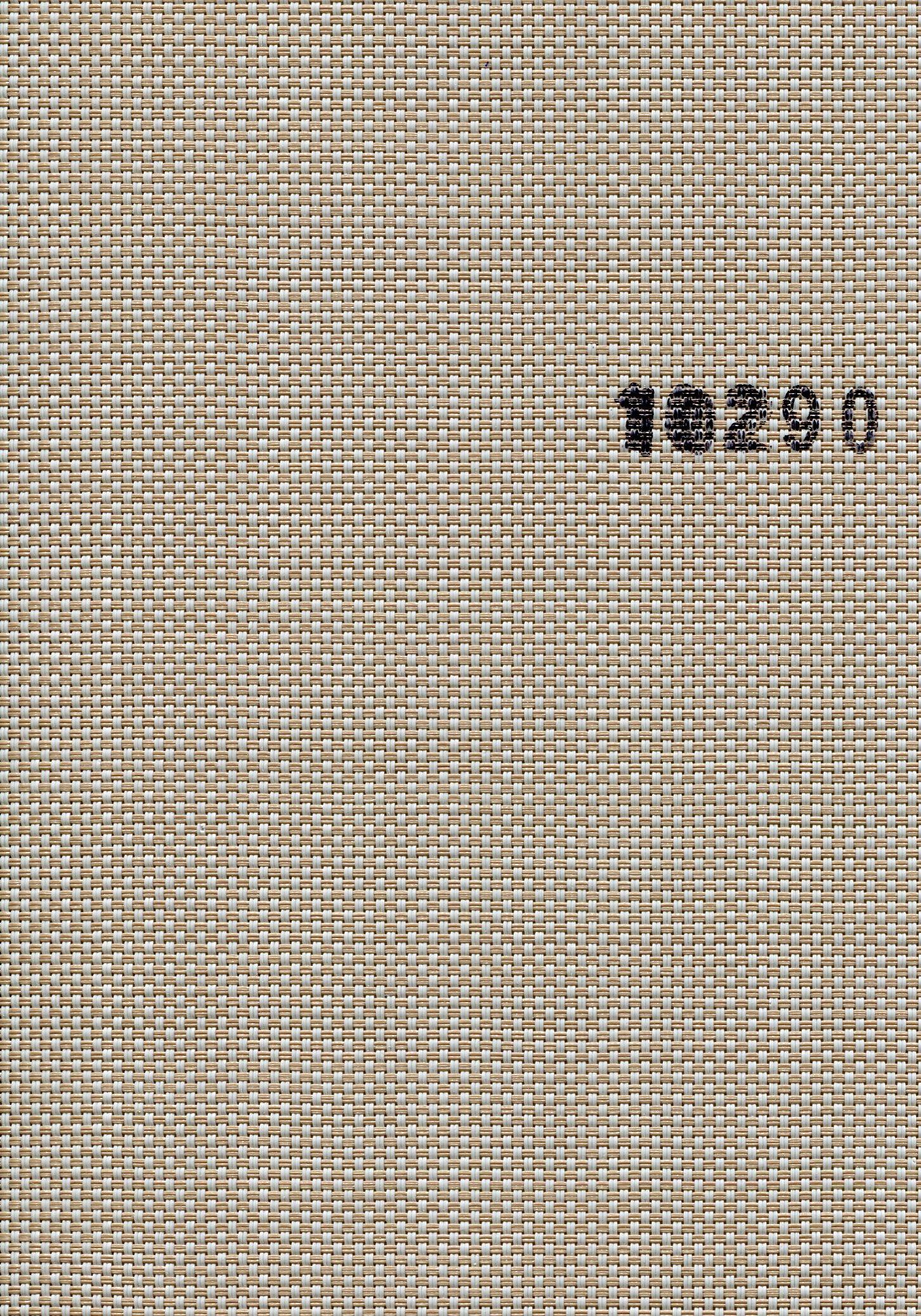 Screen 10290