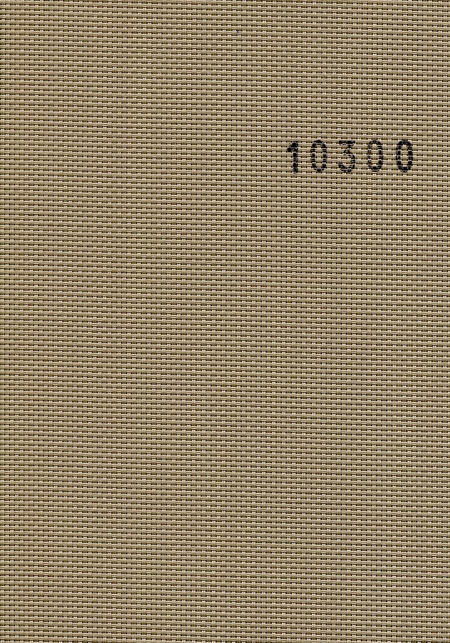 Screen 10300