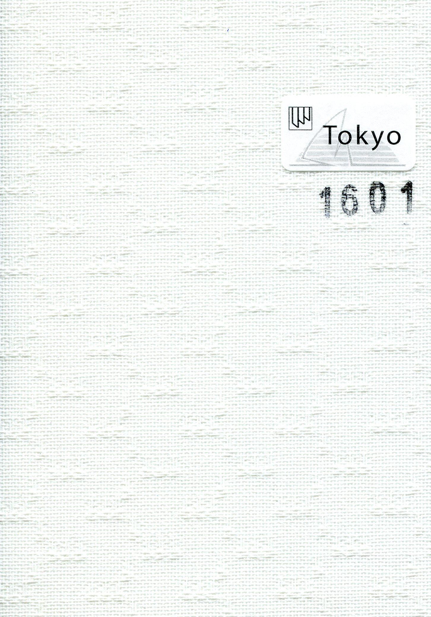 Tokyo 1601