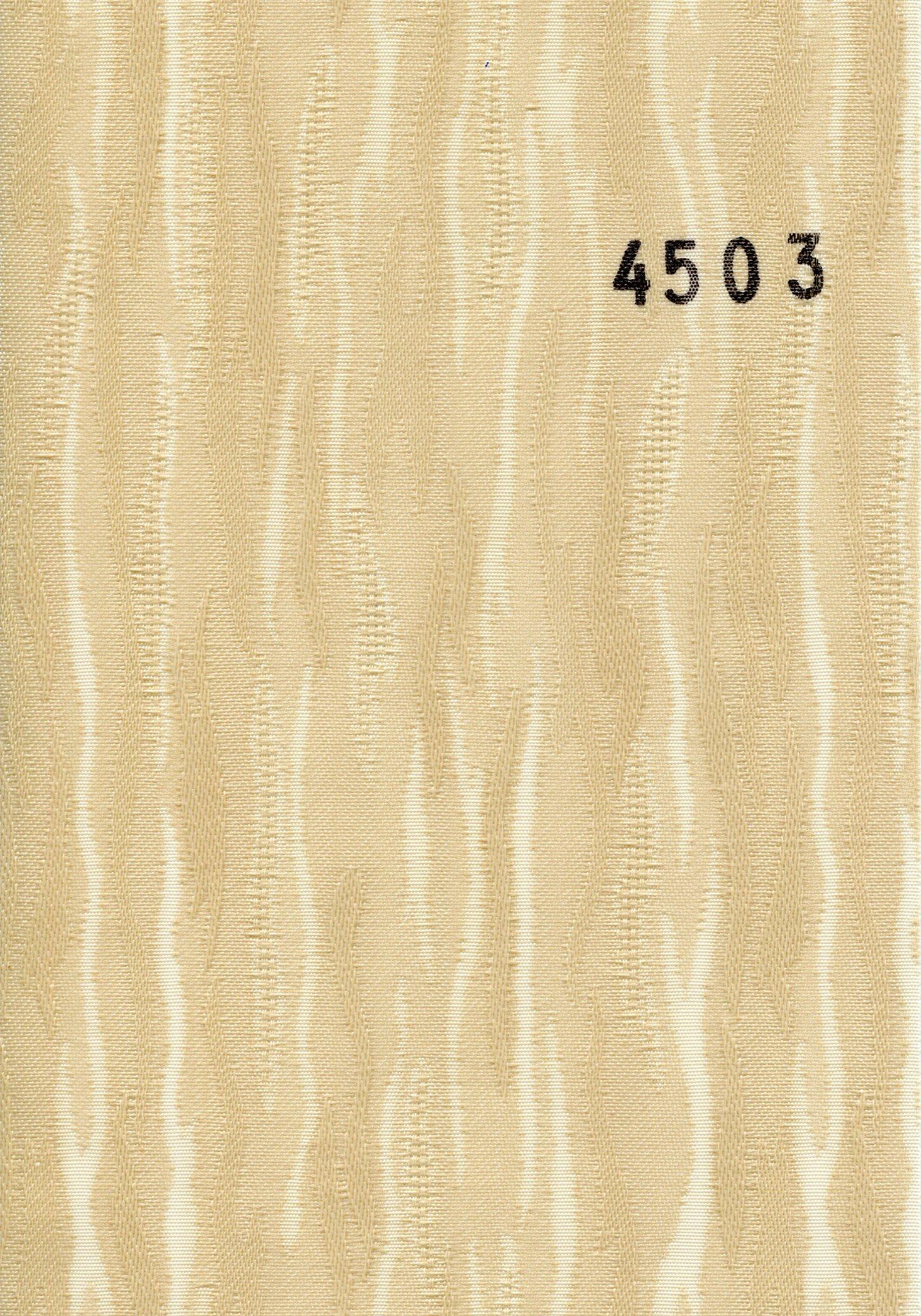 Van_Gogh_4503